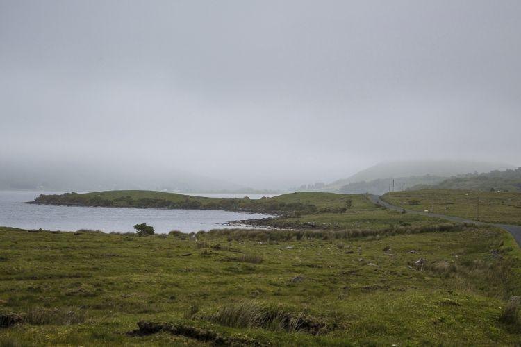 Schafe, Wasser, grün - wie auf dem Bearaway
