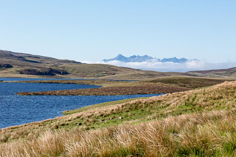 Morgens in den Highlands findet man...